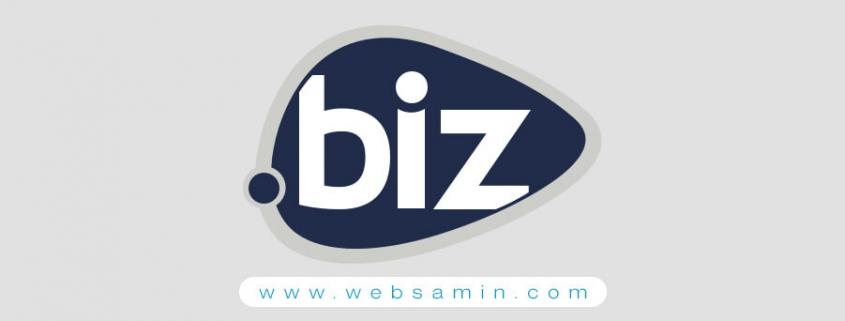 ثبت دامنه عمومی BIZ.